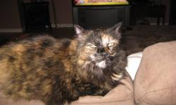 We have two female cats - both spayed and vaccinated - are moving and we cannot take them with us unfortunately - looking for a good home - they can go together or separately - very good natured and loving - call 629-8871.